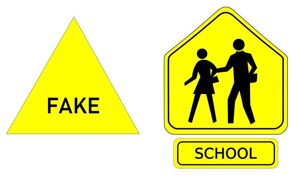 Fake School