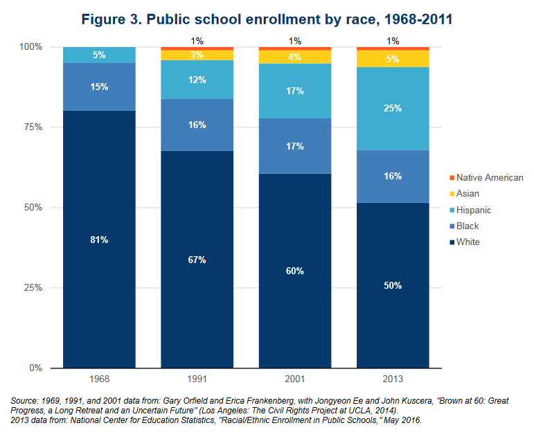 Public School Enrollment by Race Graphic